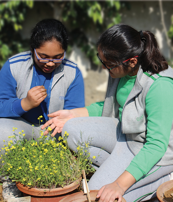 Gardening Club || Lotus Valley International, Gurgaon
