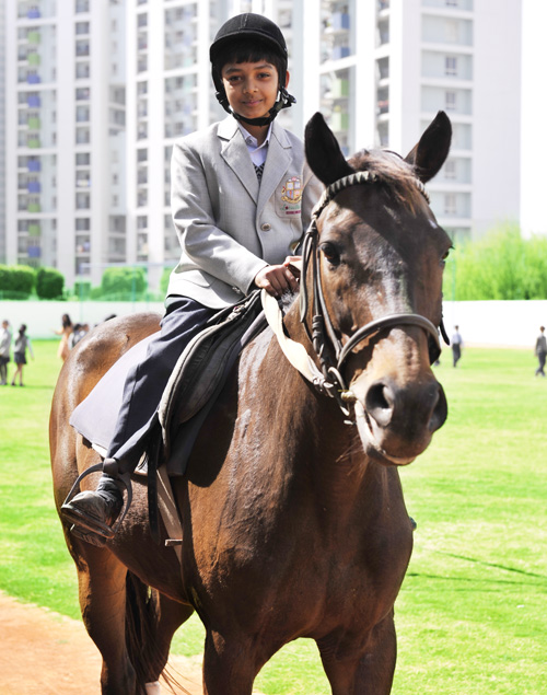 Taekwondo || Horse Riding Valley International School, Gurgaon